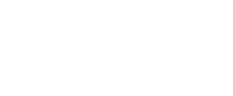 webwe logo